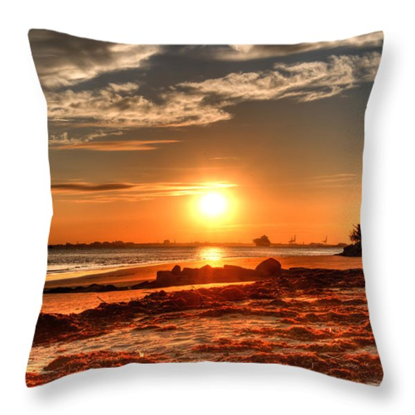 A Day Ends Over Charleston Throw Pillow by Andrew Crispi