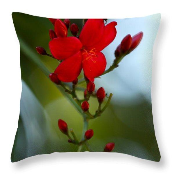 A Delicate Embrace Throw Pillow by Karon Melillo DeVega