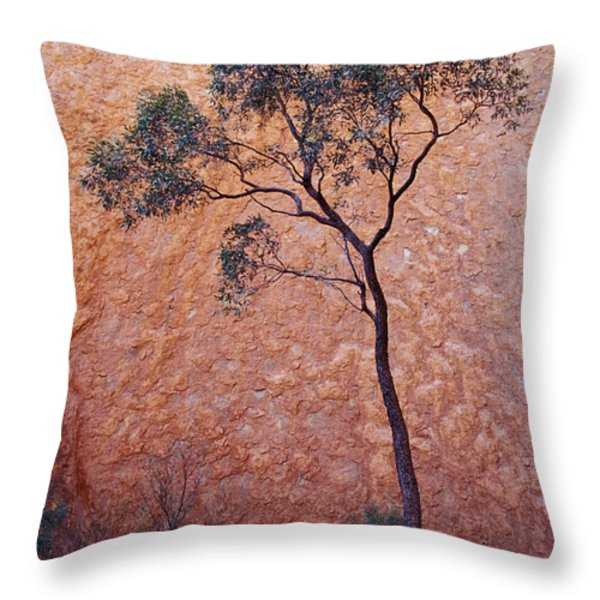 A Desert Bloodwood Tree Against The Red Throw Pillow by Jason Edwards