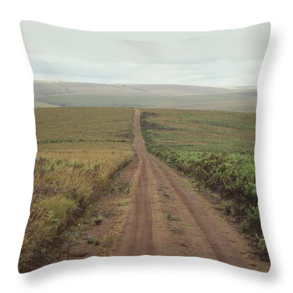 A Dirt Road Leading To The Horizon Throw Pillow by Bill Curtsinger