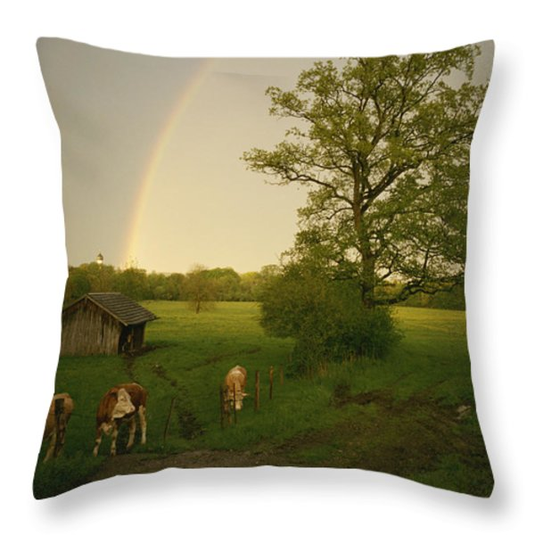 A Double Rainbow Arcs Over A Field Throw Pillow by Carsten Peter