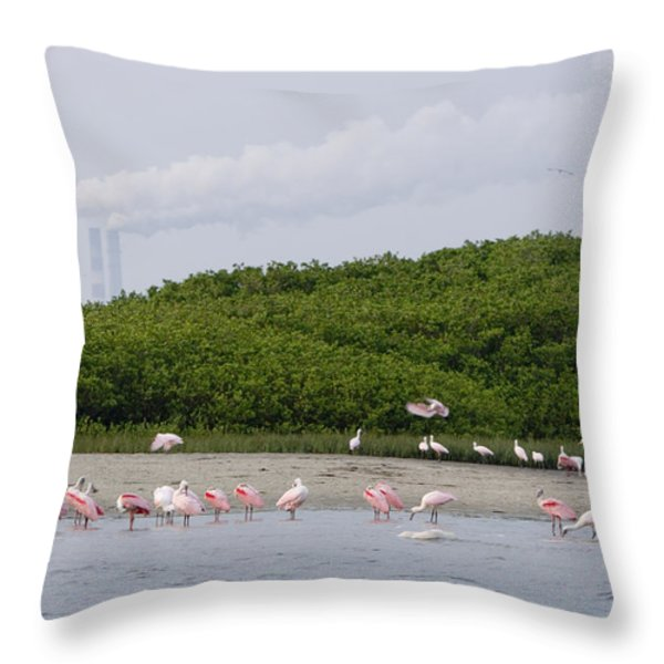 A Flock Of Juvenile And Adult Roseate Throw Pillow by Tim Laman