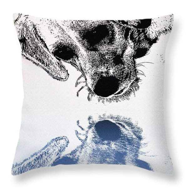 A Friendly Reflection Throw Pillow by Bill Cannon