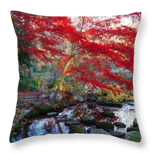 A Japanese Maple With Colorful, Red Throw Pillow by Darlyne A. Murawski