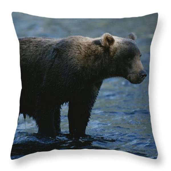A Kodiak Brown Bear Hunts For Fish Throw Pillow by George F. Mobley