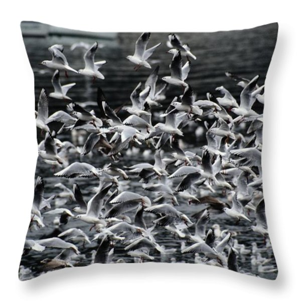 A Large Group Of Black-headed Gulls Throw Pillow by Tim Laman