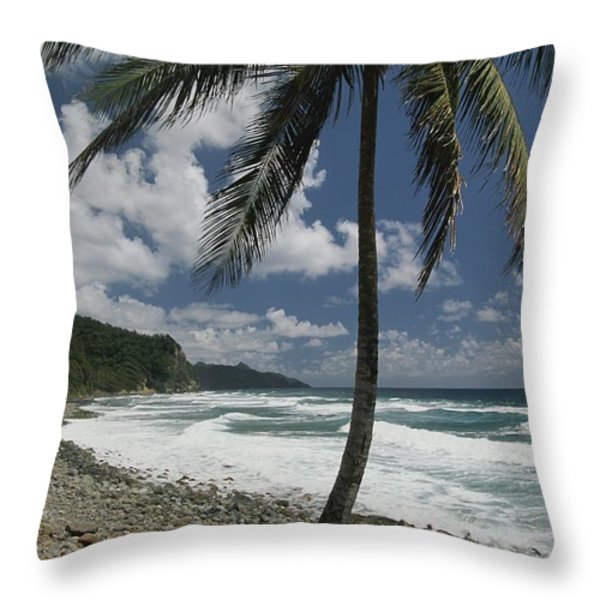 A Lone Palm Tree Grows From The Rocky Throw Pillow by Michael Melford