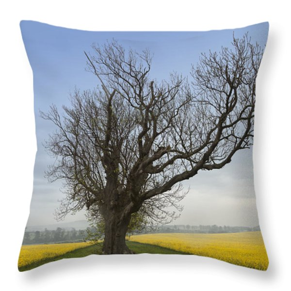A Lone Tree On The Edge Of A Yellow Throw Pillow by John Short