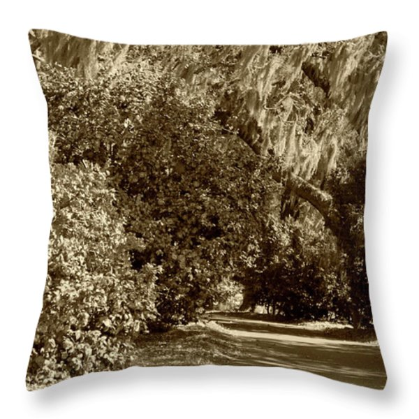 A Lowcountry Springtime Throw Pillow by Suzanne Gaff