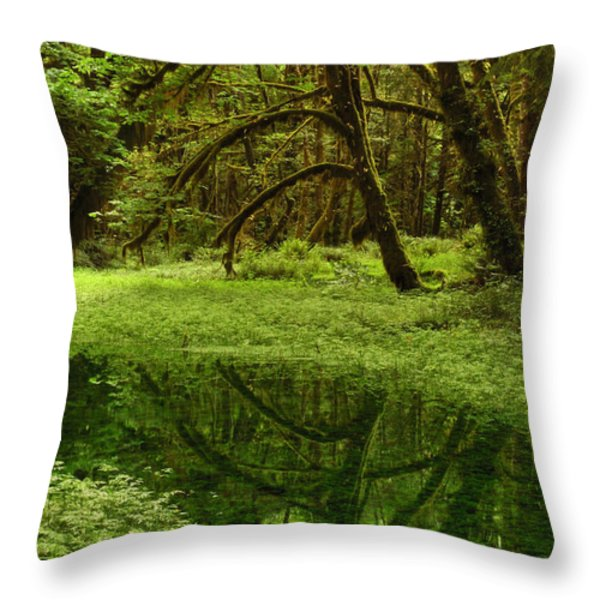 A Meadow Inside The Quinault Valley Throw Pillow by Darlyne A. Murawski