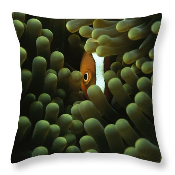 A Member Of The Research Team Throw Pillow by Sisse Brimberg