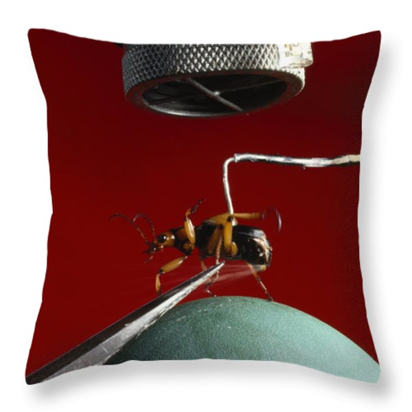 A Microphone Triggers A Flash Throw Pillow by James P. Blair
