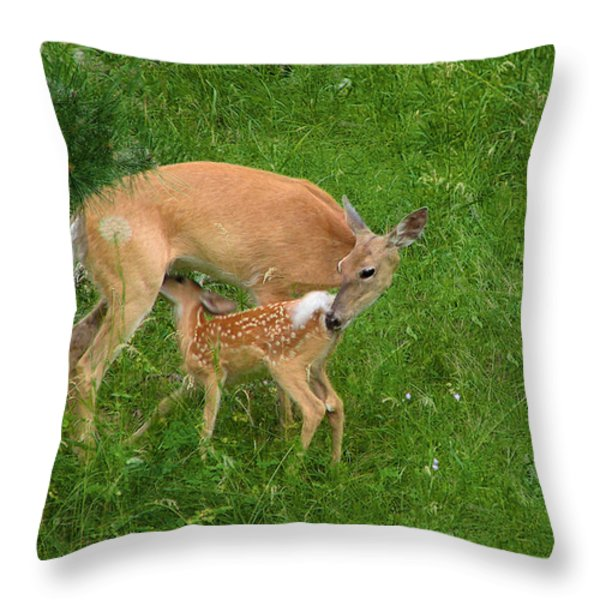 A Mother's Love - Doe and Fawn Throw Pillow by Christine Till