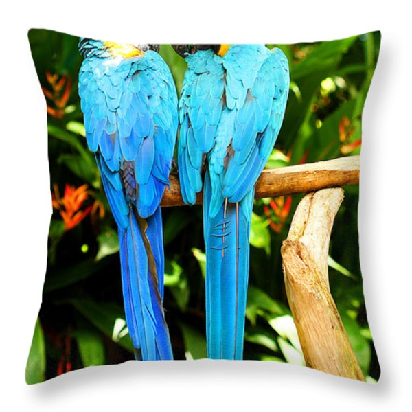 A Pair Of Parrots Throw Pillow by Marilyn Hunt