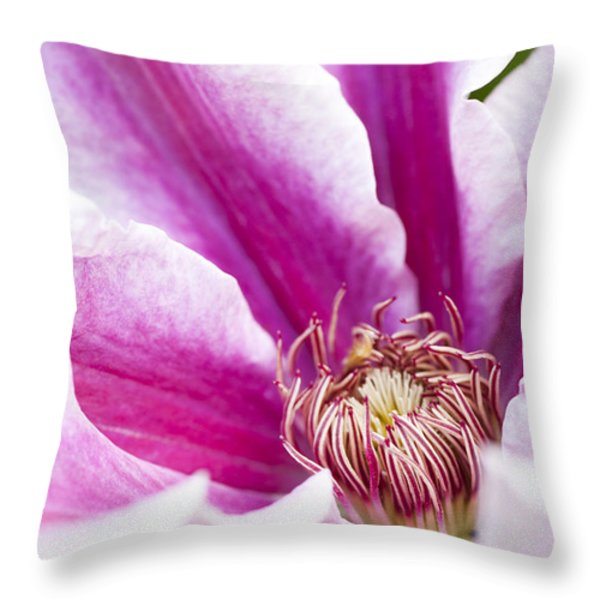 A Passionflower In The Gardens Of Royal Throw Pillow by Taylor S. Kennedy
