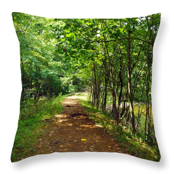A Path Around The Pond Throw Pillow by Robert Margetts