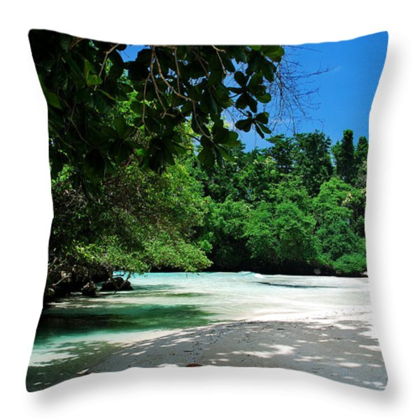 A Piece Of Paradice Throw Pillow by Hannes Cmarits