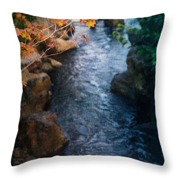 A Place Of Rest Throw Pillow by Bonnie Bruno