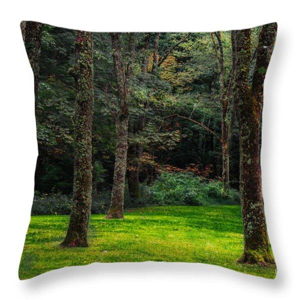 A Place To Unwind Throw Pillow by Scott Hervieux
