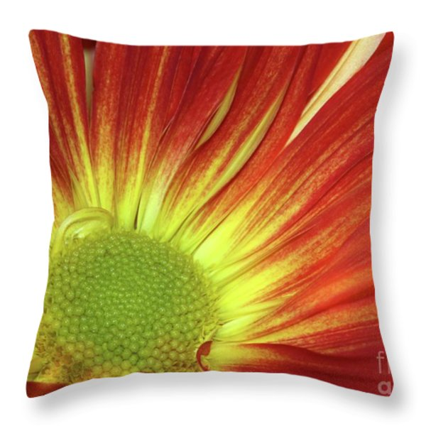 A Red Daisy Throw Pillow by Sabrina L Ryan