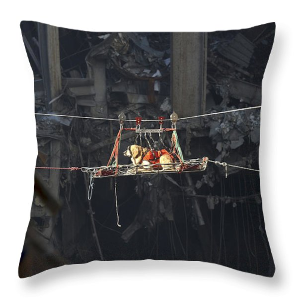 A Rescue Dog Is Transported Throw Pillow by Stocktrek Images