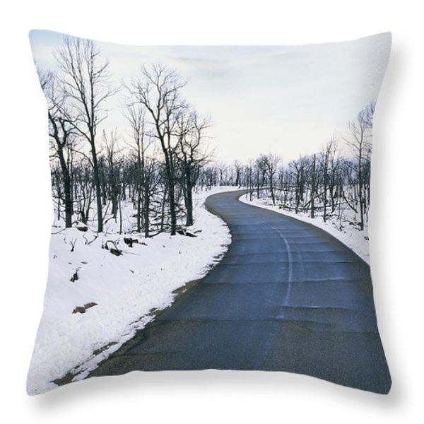 A Road Winds Through A Fire-damaged Throw Pillow by Rich Reid