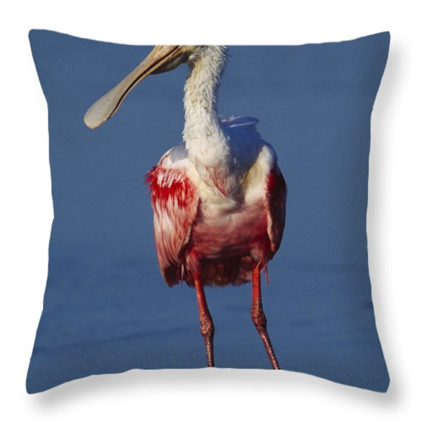 A Roseate Spoonbill Wades The Mud Throw Pillow by Klaus Nigge