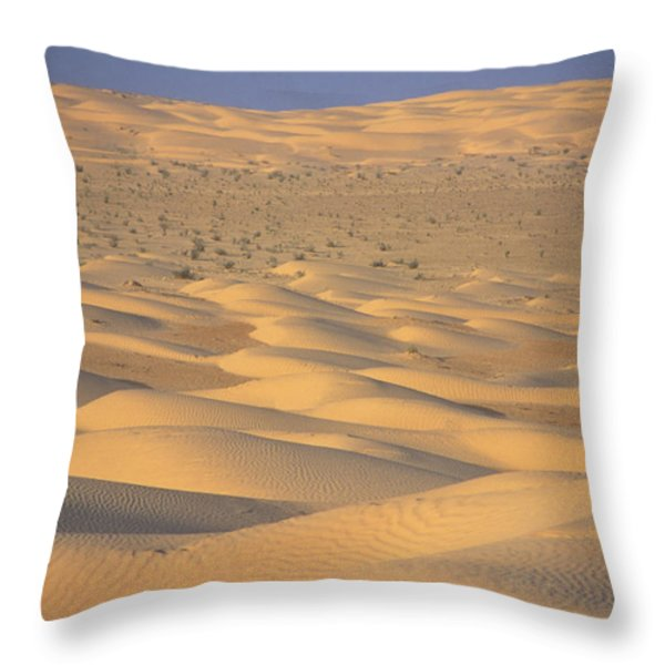 A Sea Of Dunes In The Sahara Desert Throw Pillow by Stephen Sharnoff