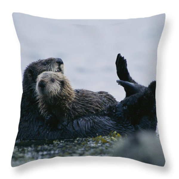 A Sea Otter Cradling Her Pup In A Kelp Throw Pillow by Joel Sartore