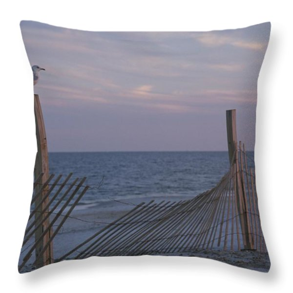 A seagull pauses Throw Pillow by STACY GOLD
