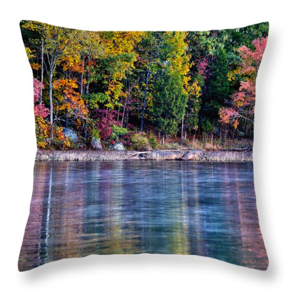 A Second Spring Throw Pillow by Mitch Cat