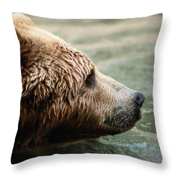 A Side-view Of A Captive Kodiak Bear Throw Pillow by Tim Laman
