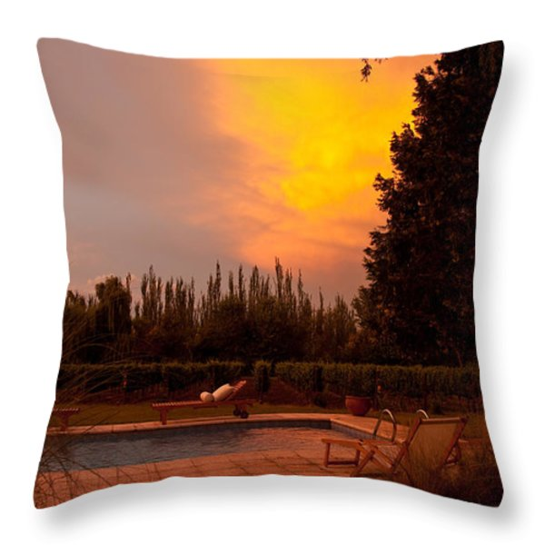 A Small Vineyard And Fine Hotel Throw Pillow by Michael S. Lewis