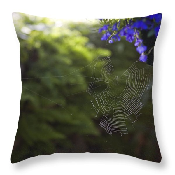 A Spider Web In A Garden Throw Pillow by Taylor S. Kennedy