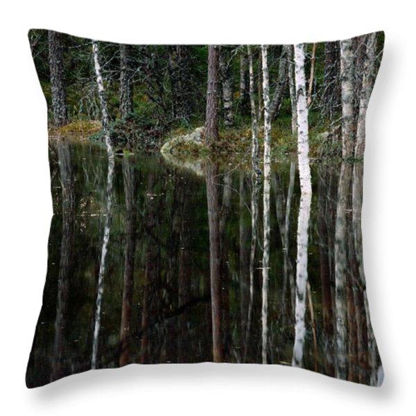 A Stream At High Water In A Woodland Throw Pillow by Mattias Klum