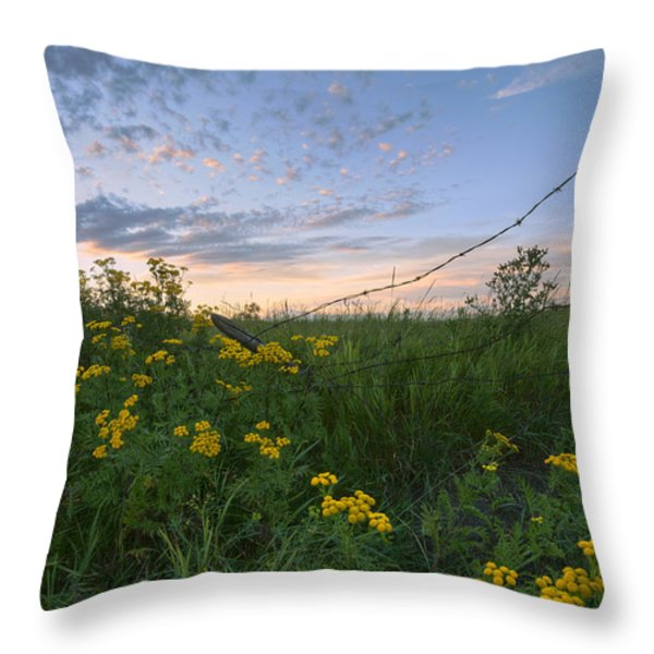 A Summer Evening Sky With Yellow Tansy Throw Pillow by Dan Jurak