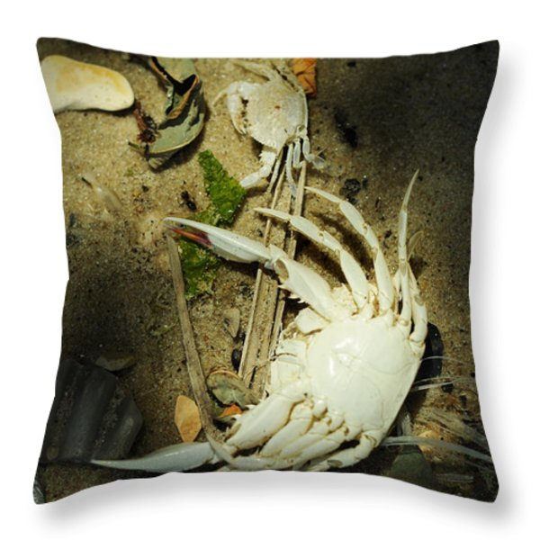 A Time To Shed Throw Pillow by Rebecca Sherman
