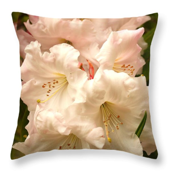 A Touch of Pink Throw Pillow by Carol Groenen