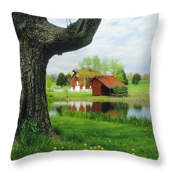 A Tree Frames A View Of A Farm Throw Pillow by Annie Griffiths