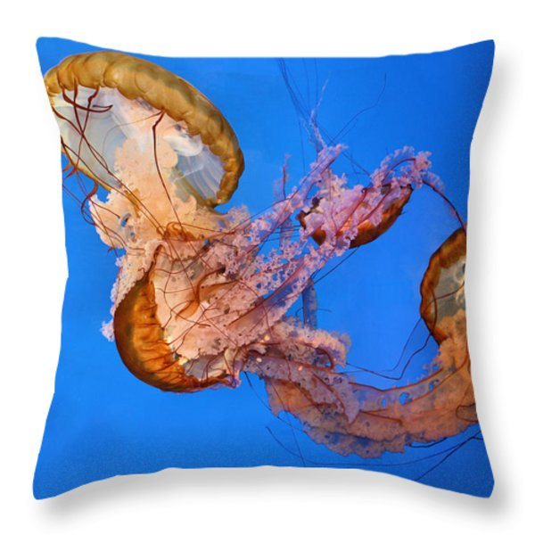 A Trio Of Jellyfish Throw Pillow by Kristin Elmquist