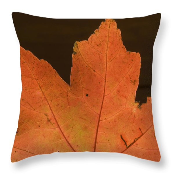 A Vibrant Colored Leaf Throw Pillow by Joel Sartore