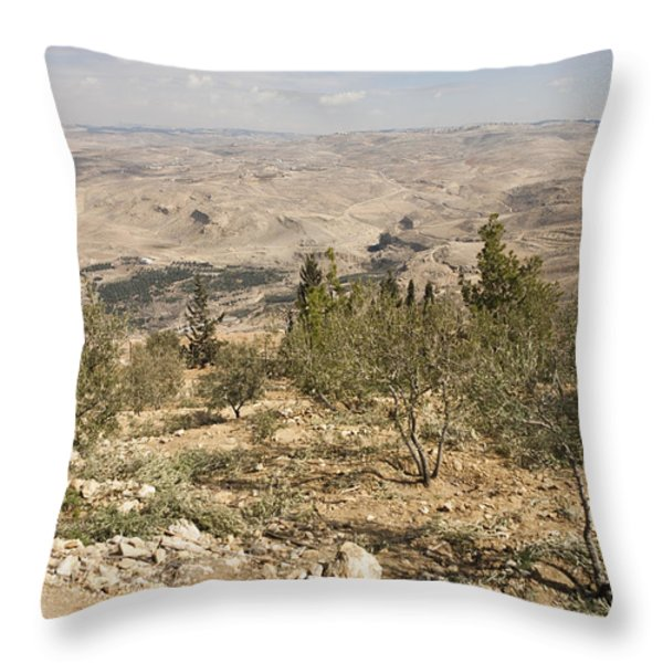 A View Of Olive Trees And Moses Throw Pillow by Taylor S. Kennedy