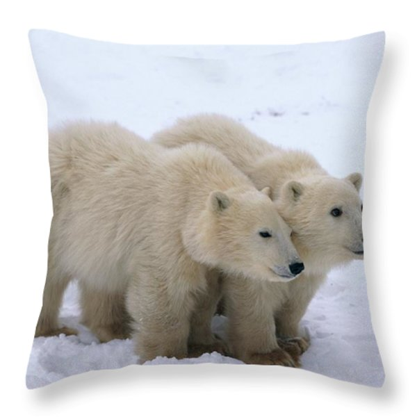 A View Of Two Polar Bear Cubs Huddling Throw Pillow by Paul Nicklen