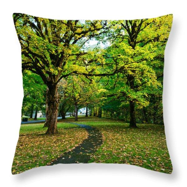 A walk in the park Throw Pillow by Dan Mihai