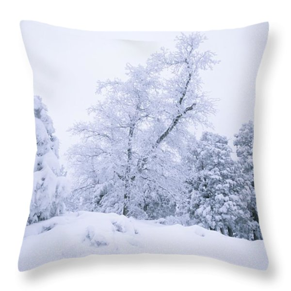 A Winter Landscape Of Snow-covered Throw Pillow by Rich Reid