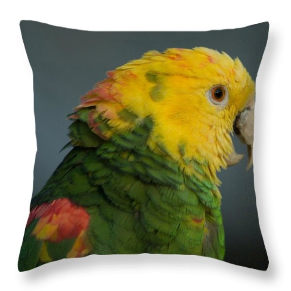 A Yellow-headed Amazon Parrots Amazona Throw Pillow by Joel Sartore