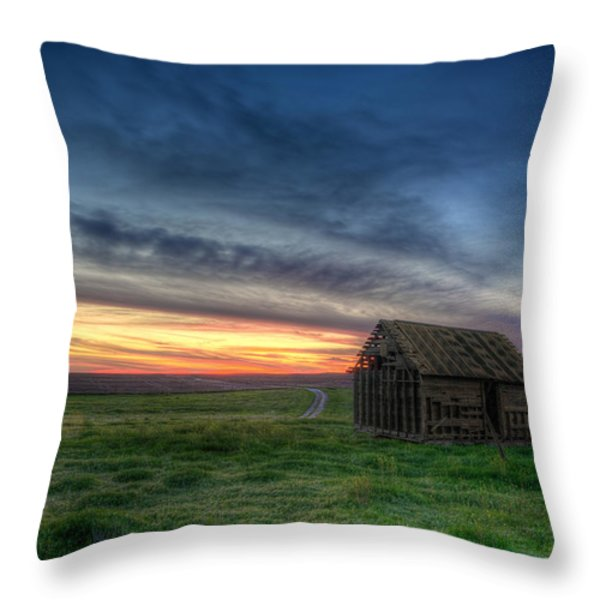 Abandoned Beauty Throw Pillow by Thomas Zimmerman