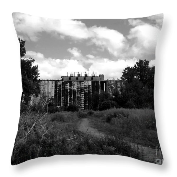 Abandoned Grain Elevator In Buffalo Throw Pillow by Rose Santuci-Sofranko