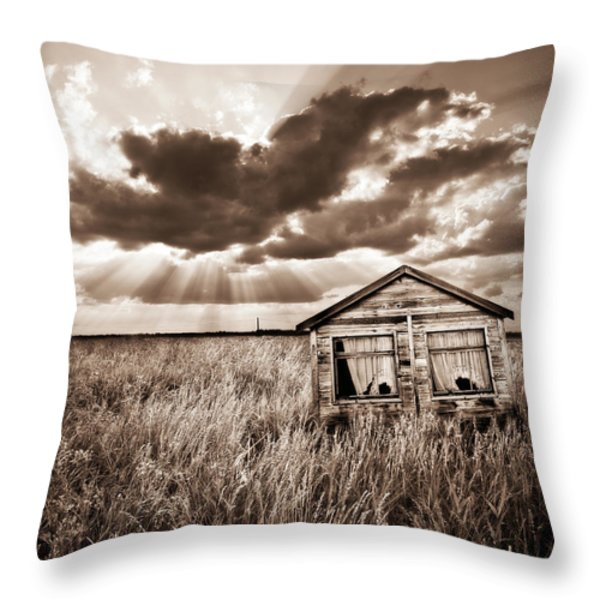 abandoned Throw Pillow by Meirion Matthias