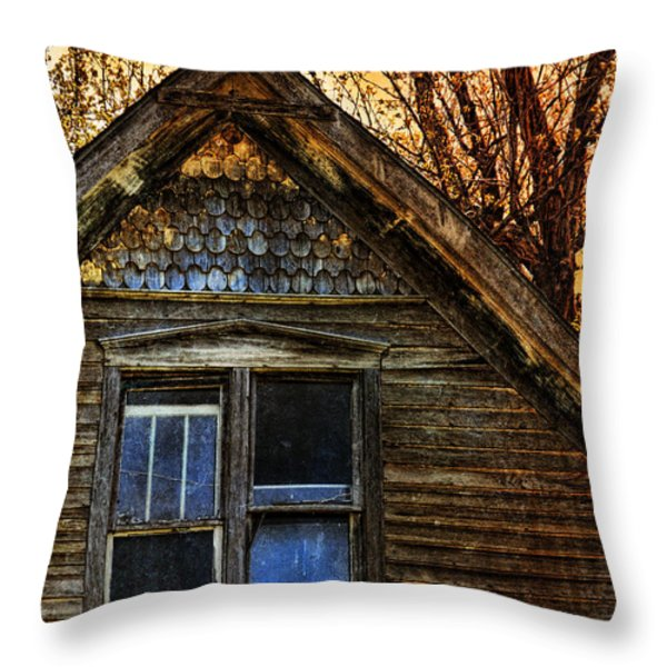 Abandoned Old House Throw Pillow by Jill Battaglia